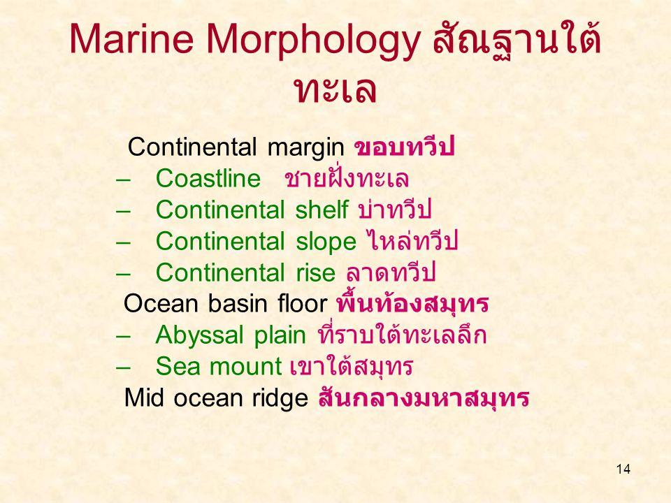 Marine Morphology สัณฐานใต้ทะเล