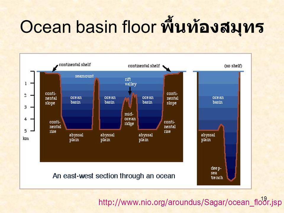 Ocean basin floor พื้นท้องสมุทร