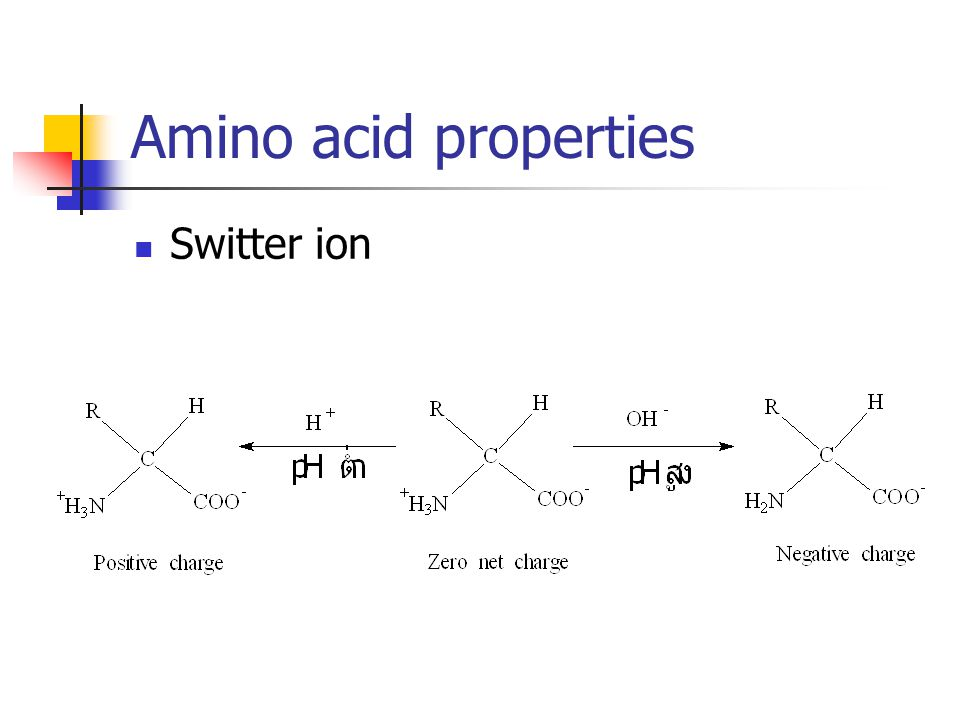 Amino acid properties Switter ion