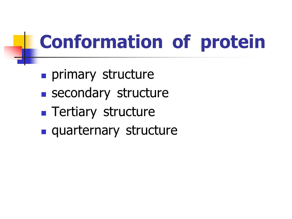 Conformation of protein