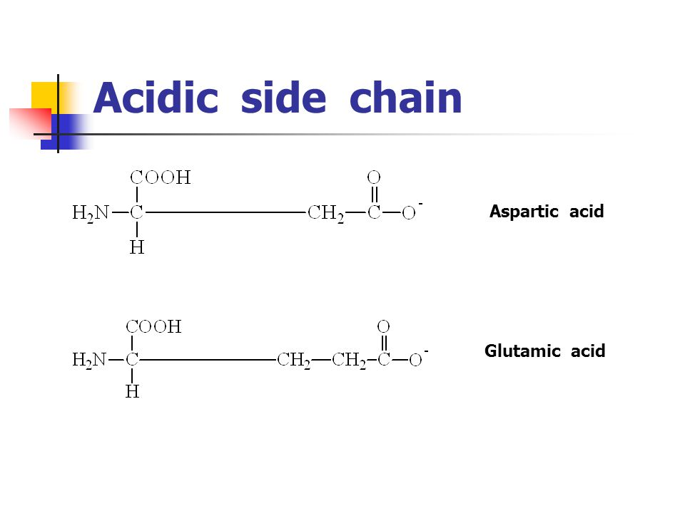 Acidic side chain Aspartic acid Glutamic acid