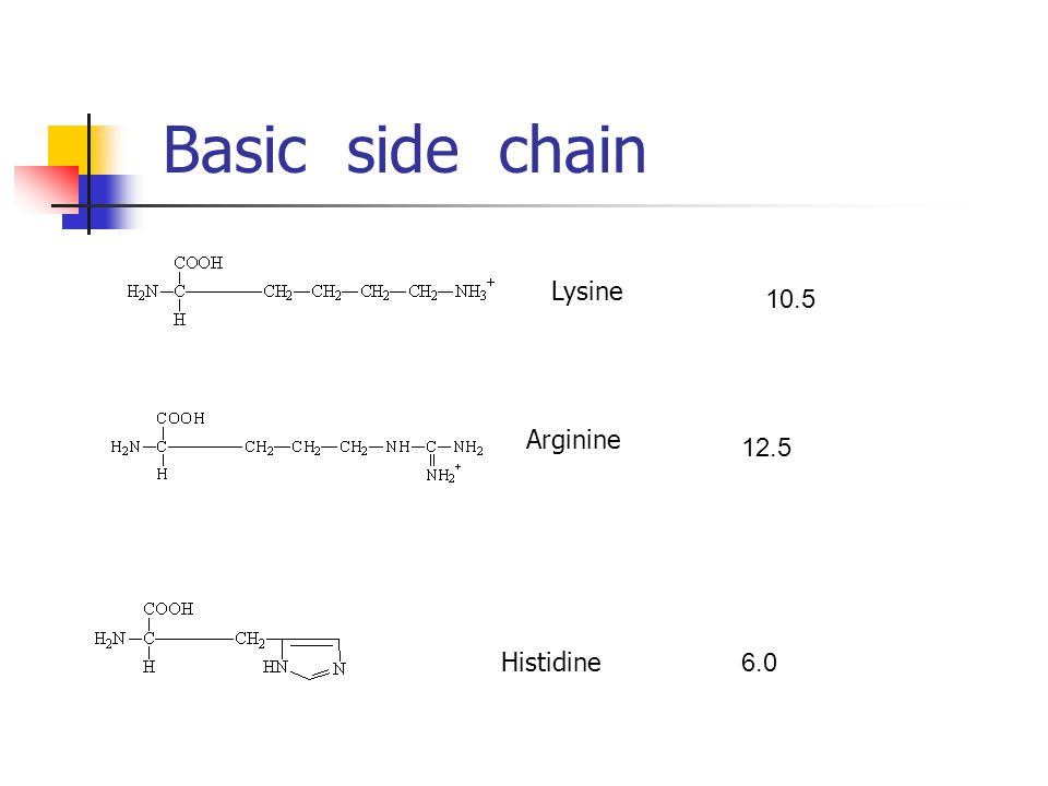 Basic side chain Lysine 10.5 Arginine 12.5 Histidine 6.0