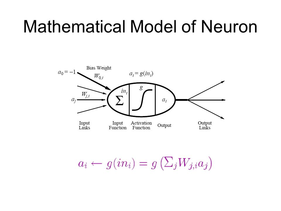 Mathematical Model of Neuron