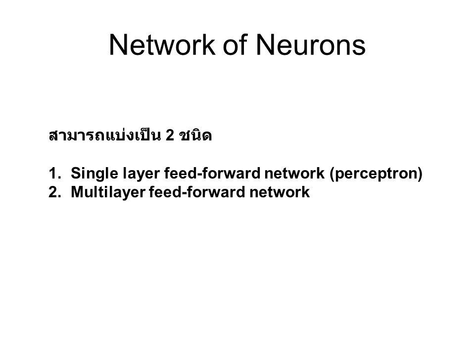 Network of Neurons สามารถแบ่งเป็น 2 ชนิด