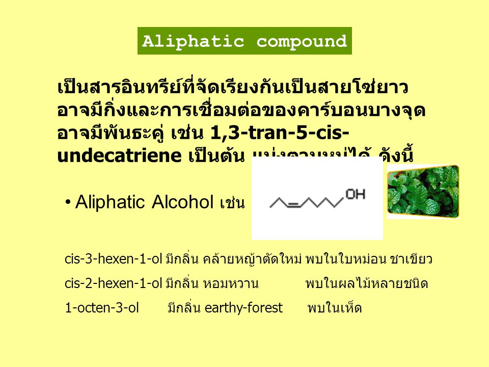 Aliphatic Alcohol เช่น
