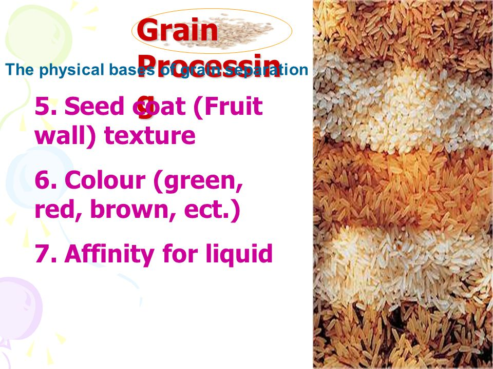 Grain Processing 5. Seed coat (Fruit wall) texture