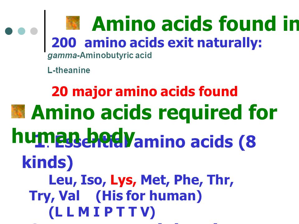 Amino acids found in Plant