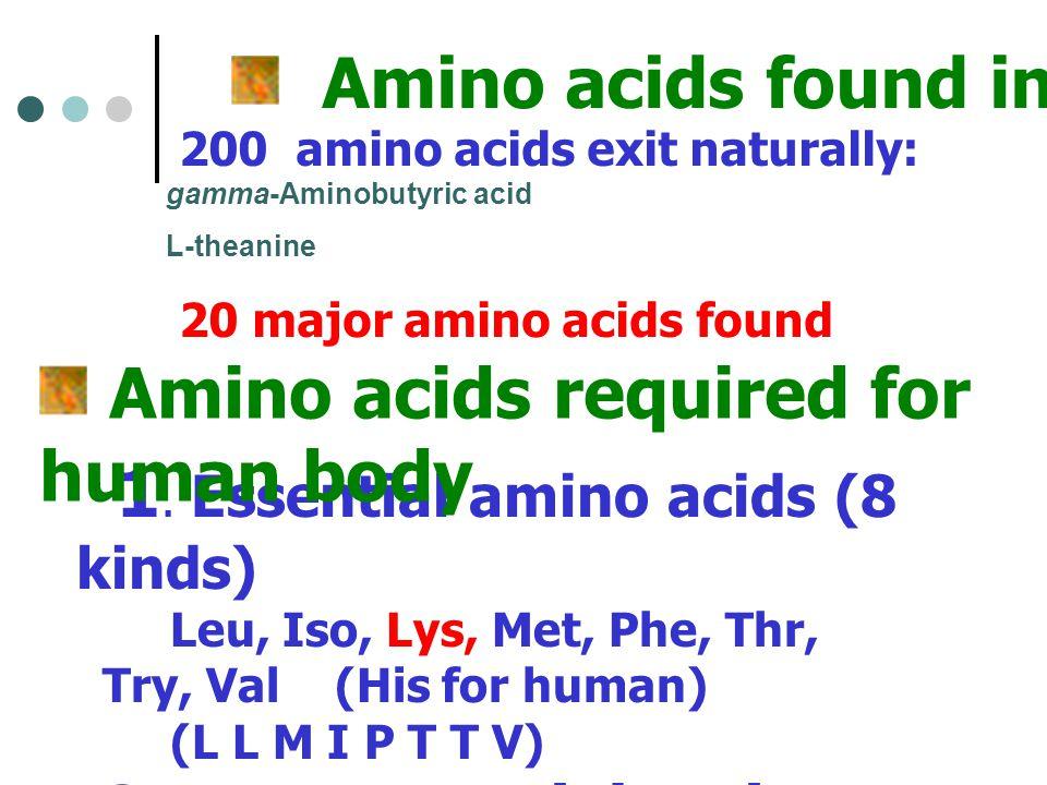 Amino acids found in Plant