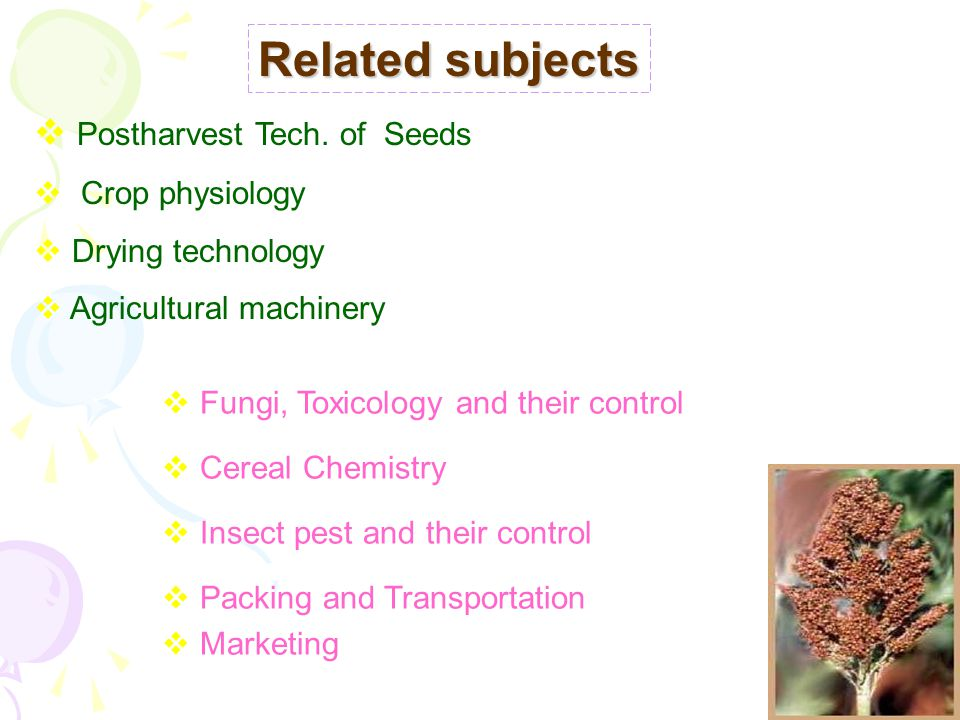 Related subjects Postharvest Tech. of Seeds Crop physiology