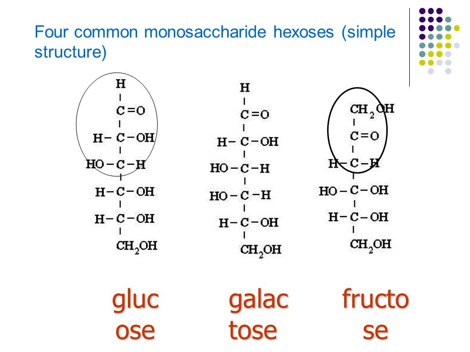 Four common monosaccharide hexoses (simple structure)