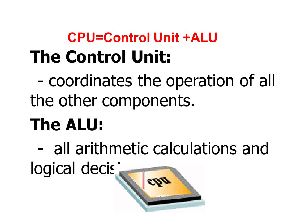 - coordinates the operation of all the other components. The ALU: