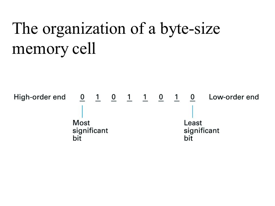The organization of a byte-size memory cell
