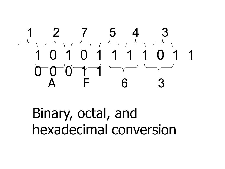 Binary, octal, and hexadecimal conversion