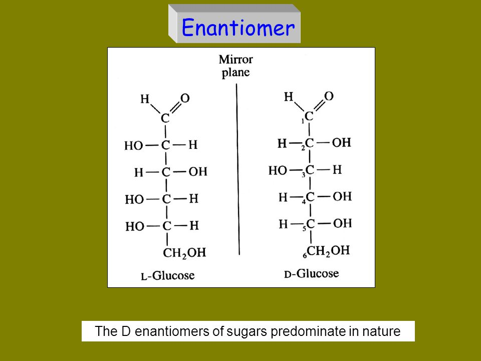 The D enantiomers of sugars predominate in nature