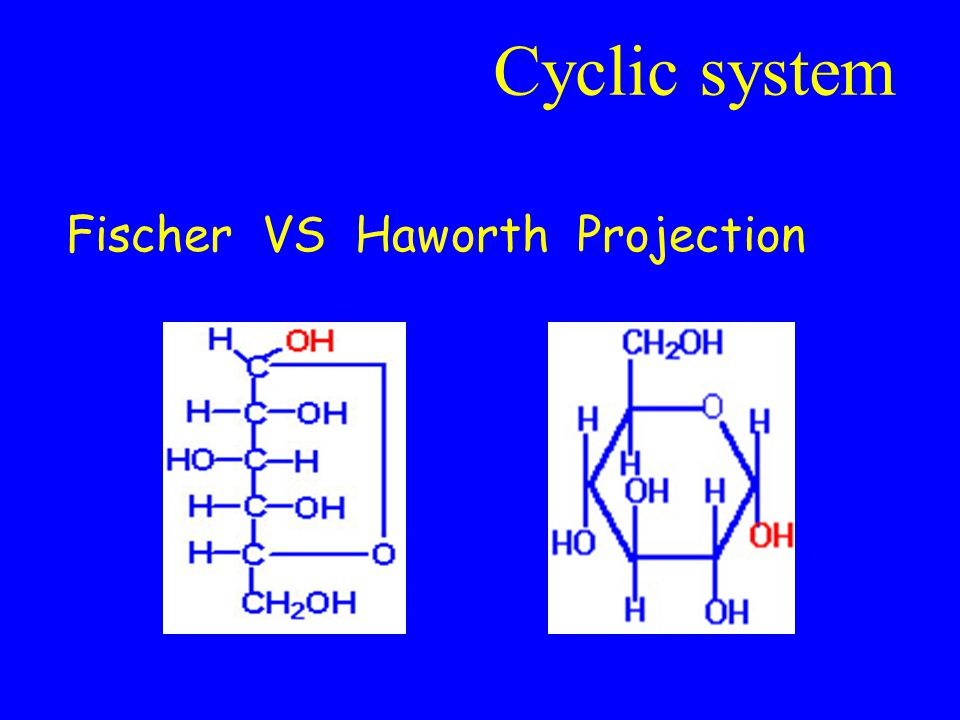 Cyclic system Fischer VS Haworth Projection