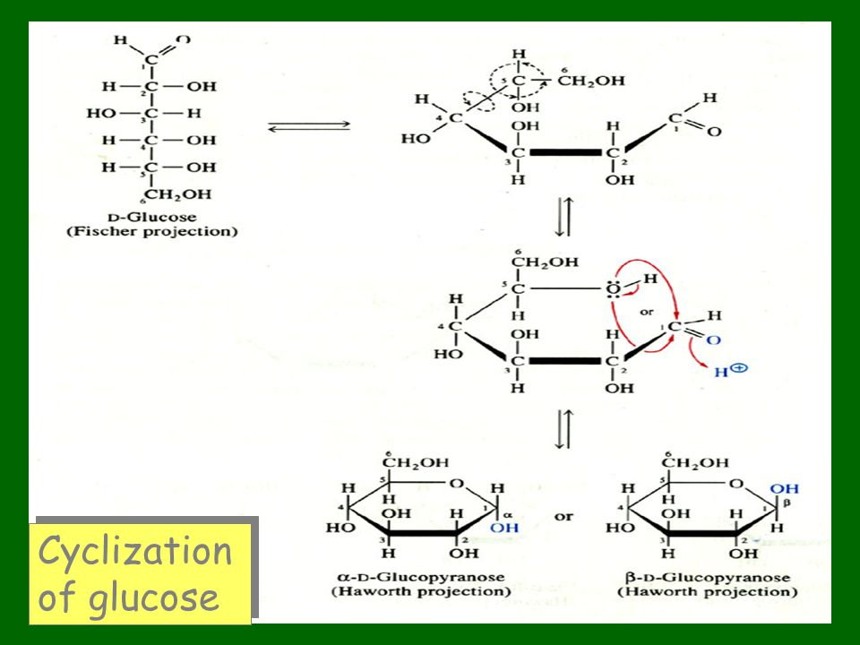 Cyclization of glucose