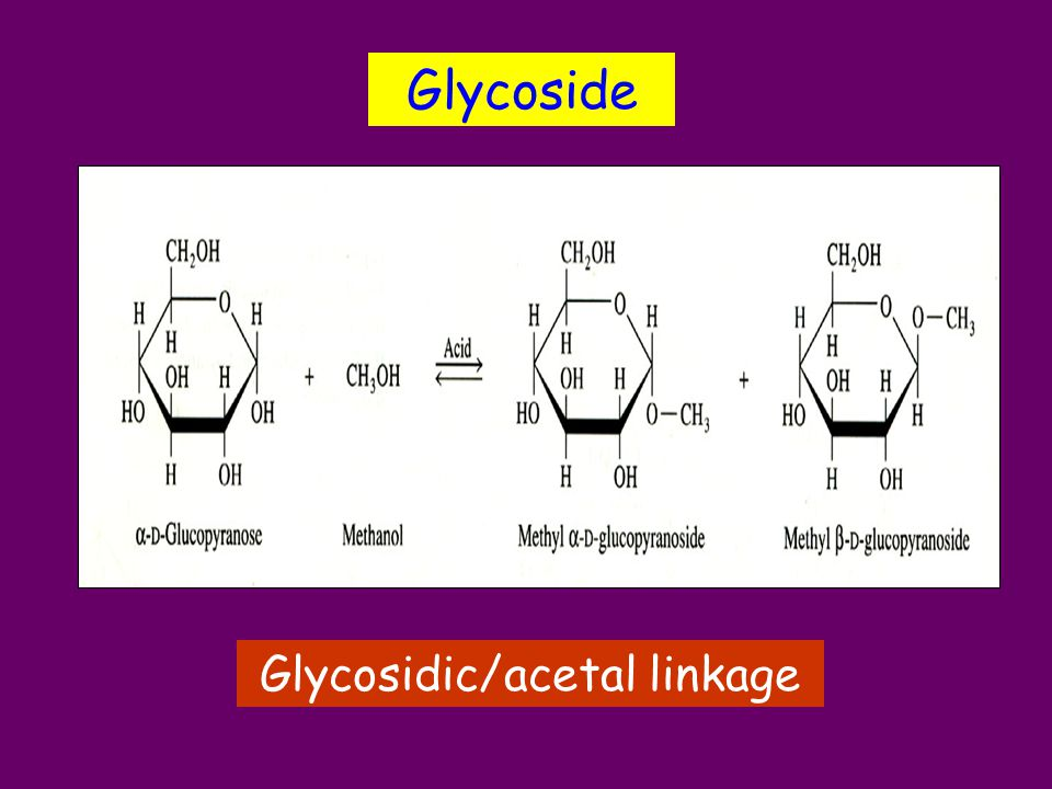 Glycosidic/acetal linkage