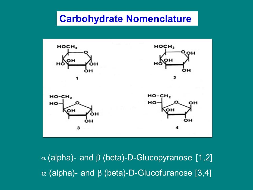 Carbohydrate Nomenclature
