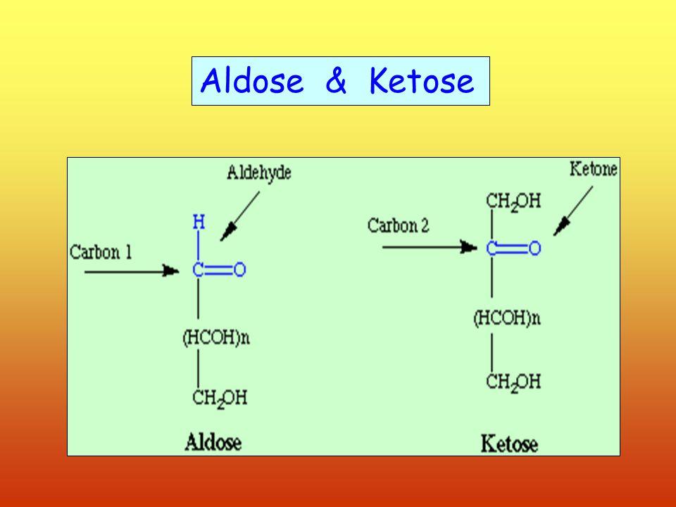 Aldose & Ketose