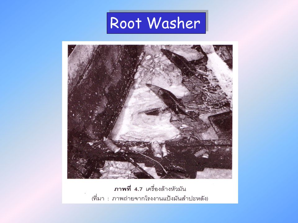 Root Washer