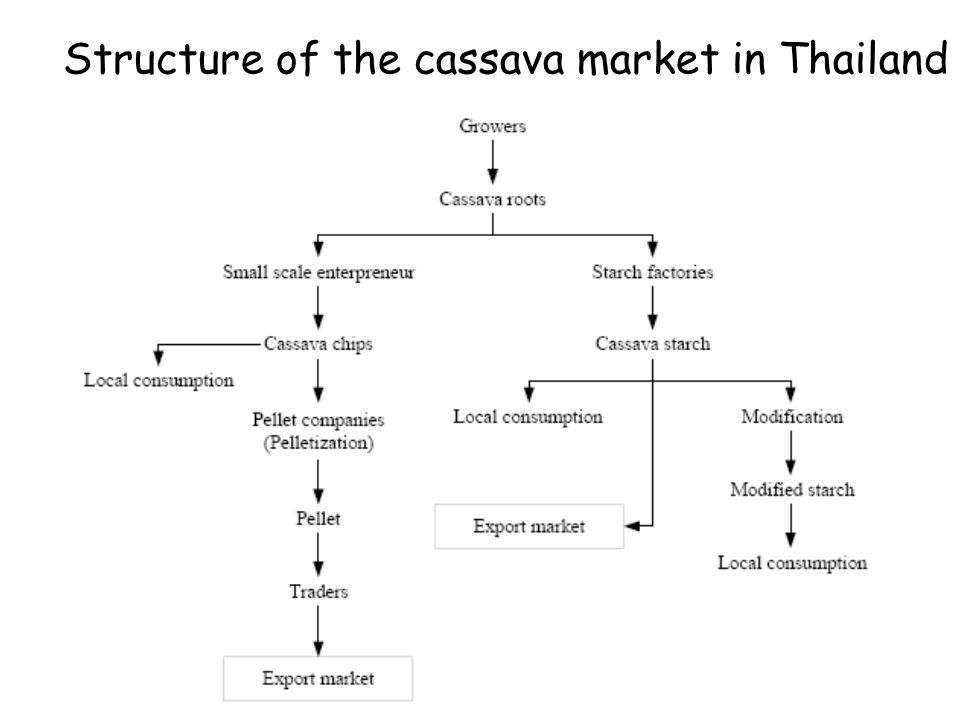 Structure of the cassava market in Thailand