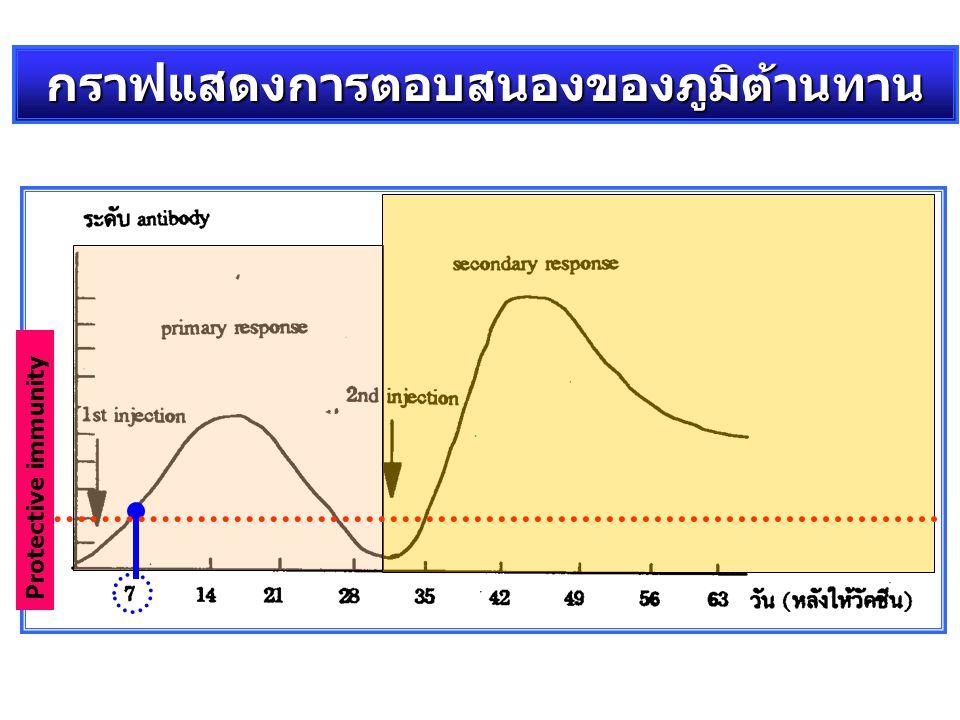 กราฟแสดงการตอบสนองของภูมิต้านทาน
