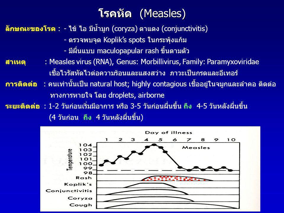 โรคหัด (Measles) ลักษณะของโรค : - ไข้ ไอ มีน้ำมูก (coryza) ตาแดง (conjunctivitis) - ตรวจพบจุด Koplik's spots ในกระพุ้งแก้ม.