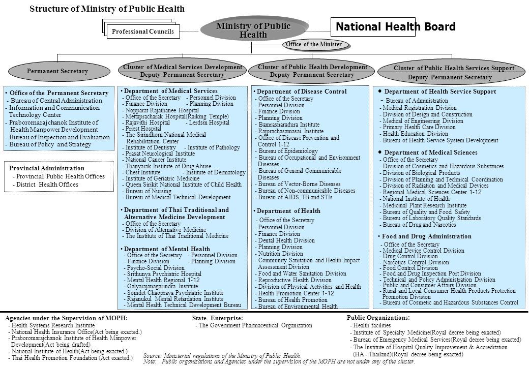 Cluster of Public Health Services Support