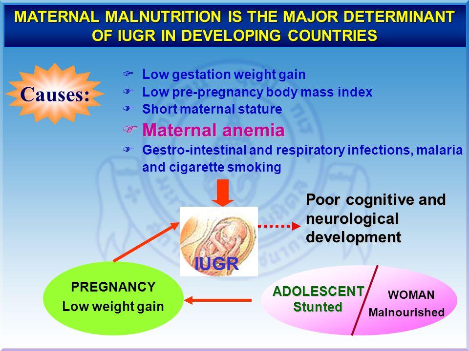 Causes: Maternal anemia IUGR