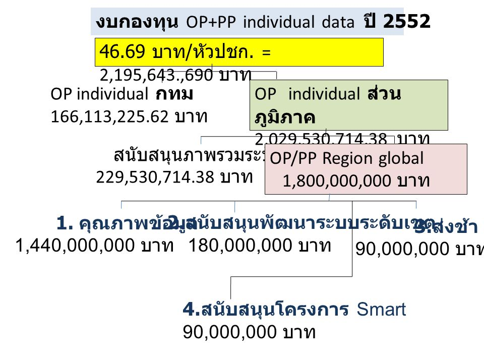 งบกองทุน OP+PP individual data ปี 2552
