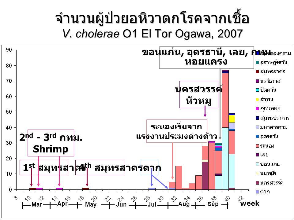 จำนวนผู้ป่วยอหิวาตกโรคจากเชื้อ V. cholerae O1 El Tor Ogawa, 2007