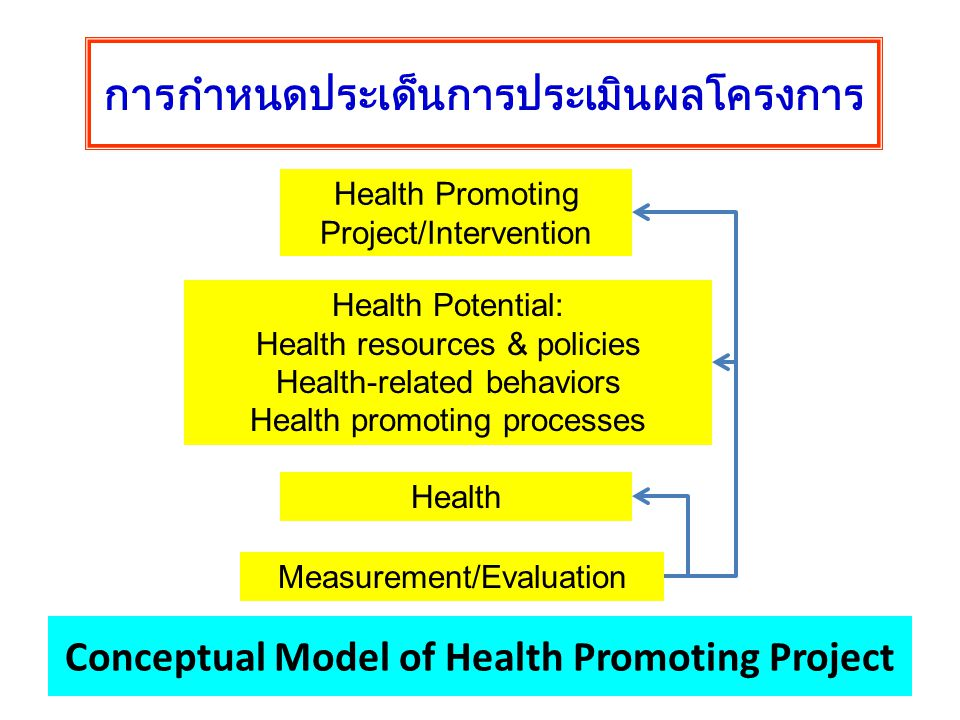 Conceptual Model of Health Promoting Project