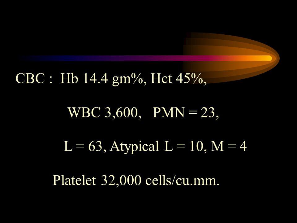 CBC : Hb 14.4 gm%, Hct 45%, WBC 3,600, PMN = 23, L = 63, Atypical L = 10, M = 4.