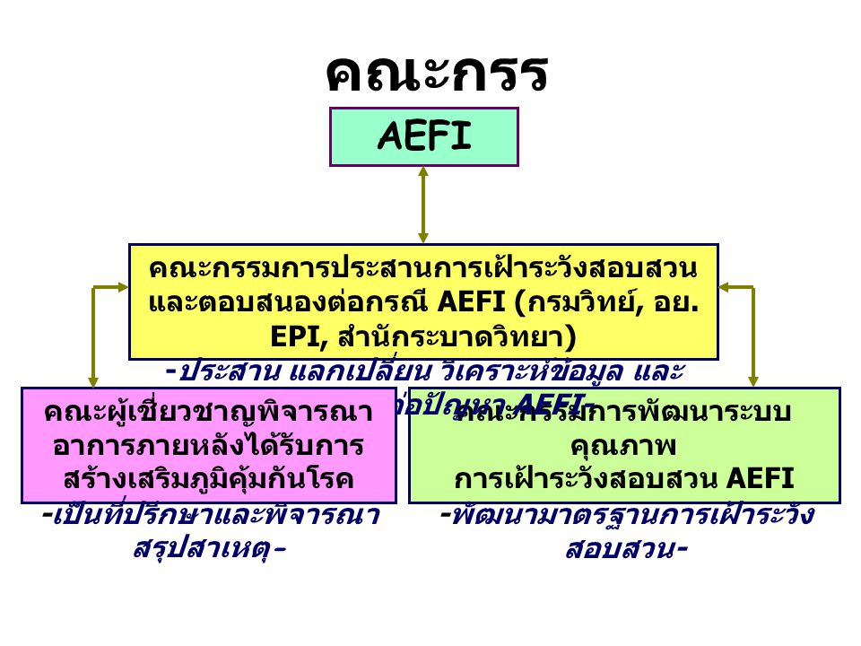 คณะกรรมการ AEFI.