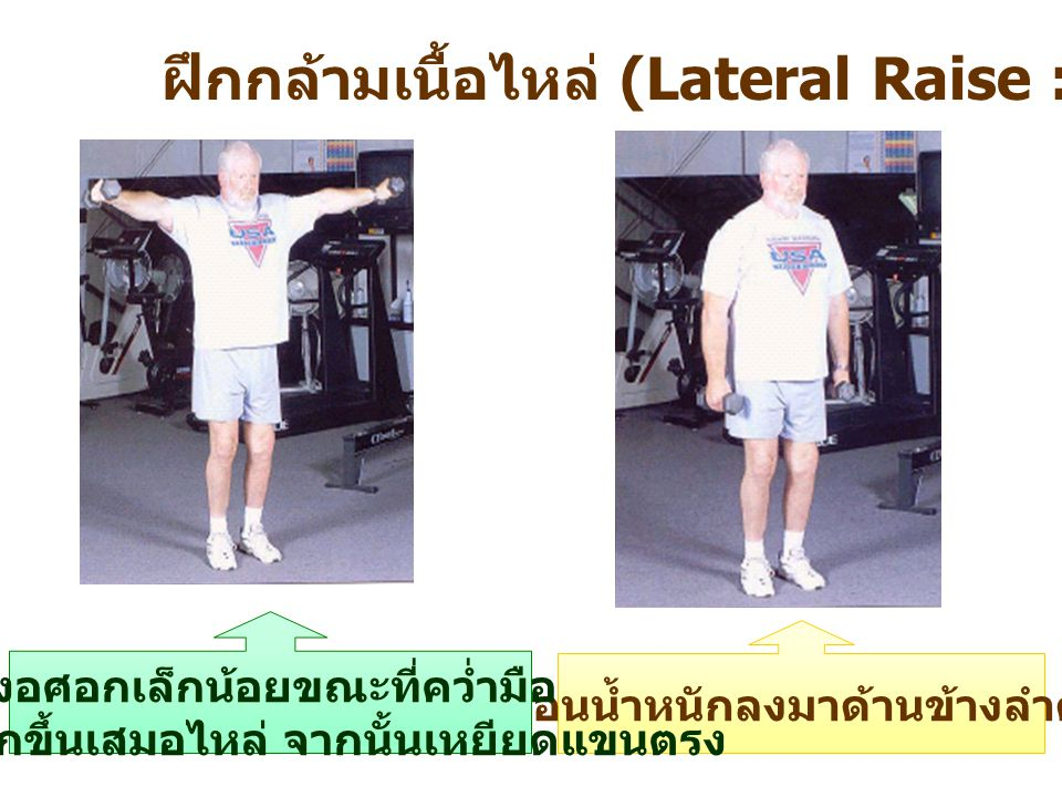 ฝึกกล้ามเนื้อไหล่ (Lateral Raise : Shoulders)