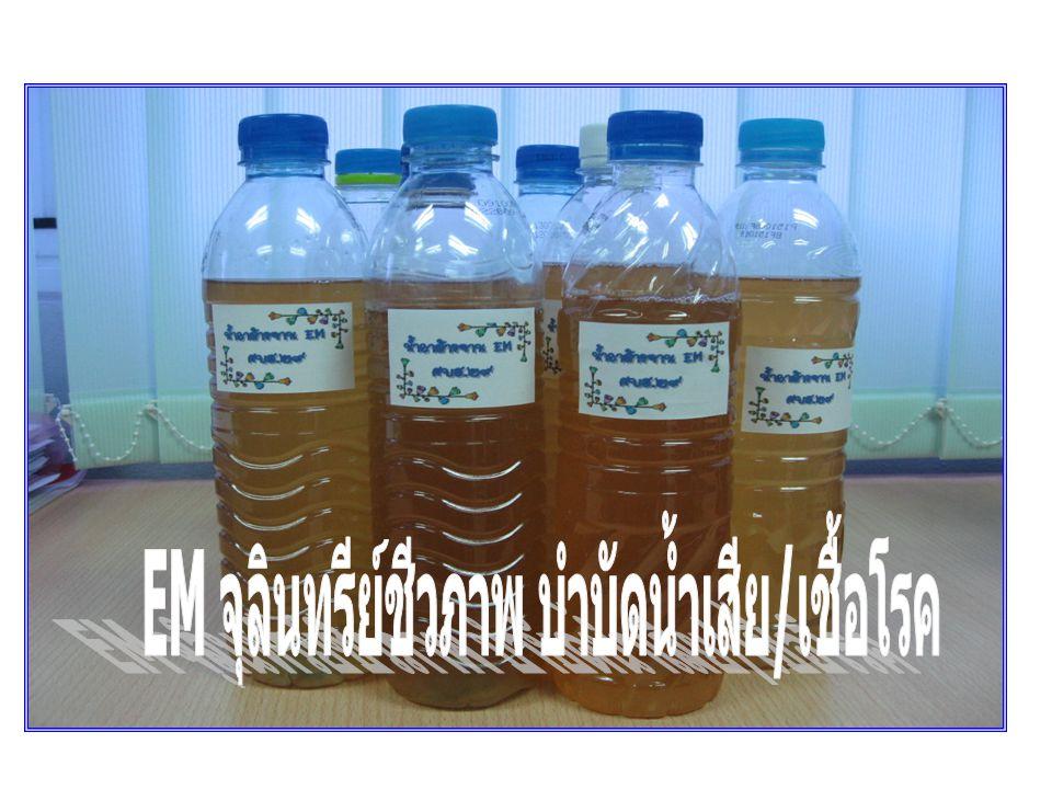 EM จุลินทรีย์ชีวภาพ บำบัดน้ำเสีย/เชื้อโรค
