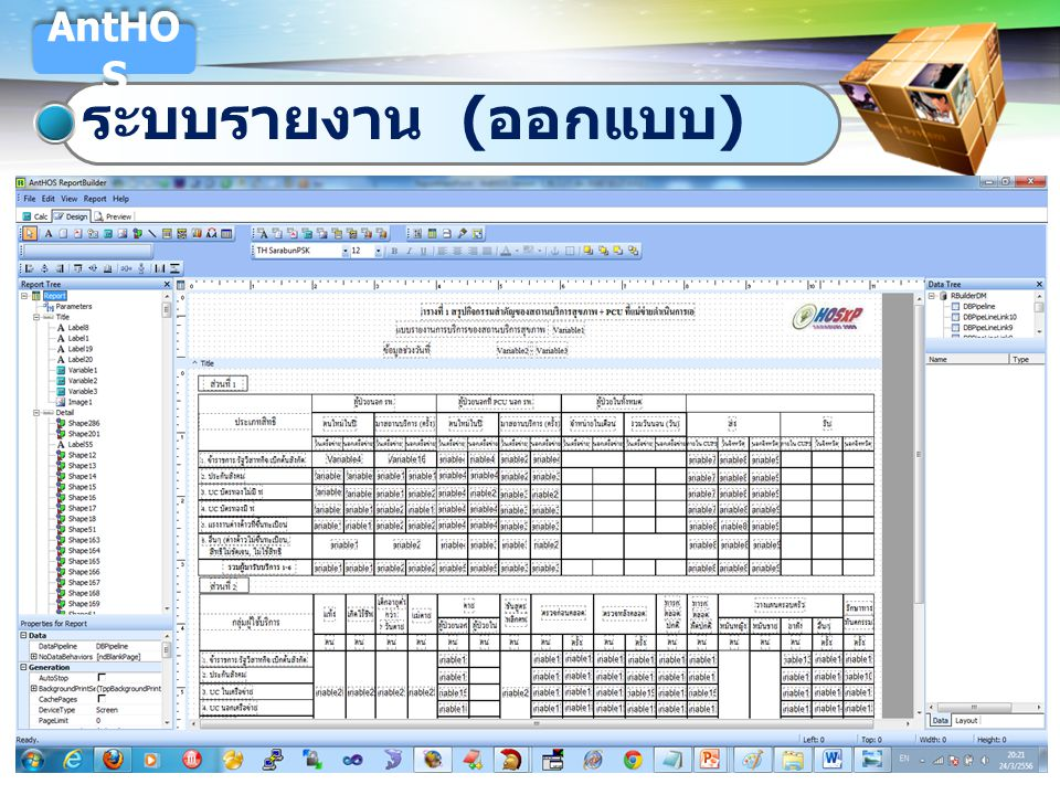 AntHOS ระบบรายงาน (ออกแบบ)