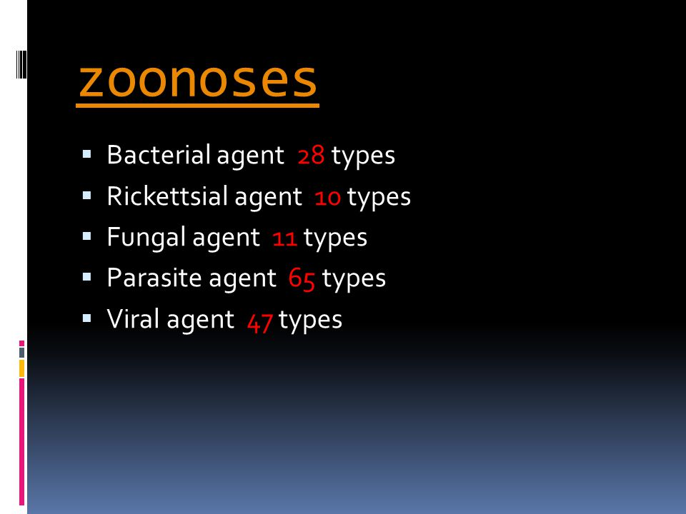 zoonoses Bacterial agent 28 types Rickettsial agent 10 types