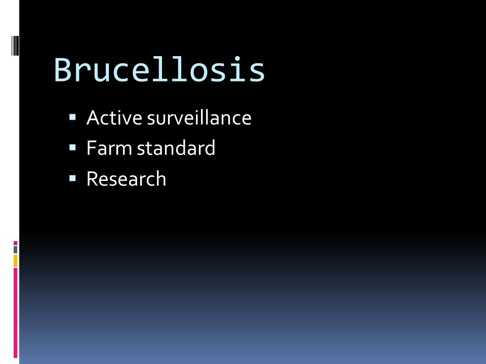 Brucellosis Active surveillance Farm standard Research