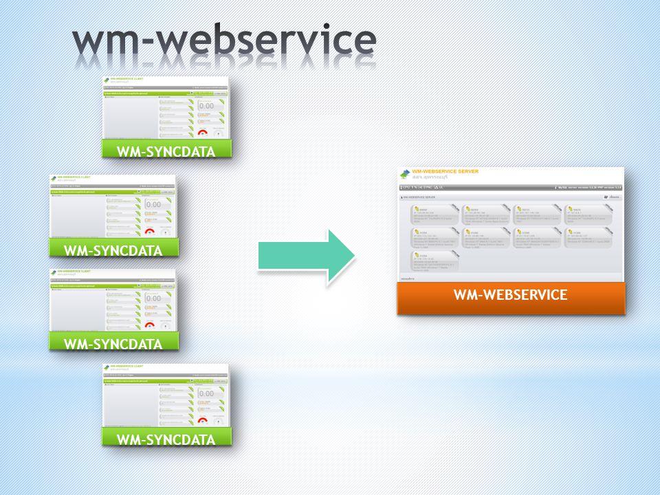wm-webservice WM-SYNCDATA WM-SYNCDATA WM-WEBSERVICE WM-SYNCDATA