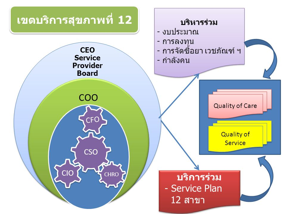 CEO Service Provider Board