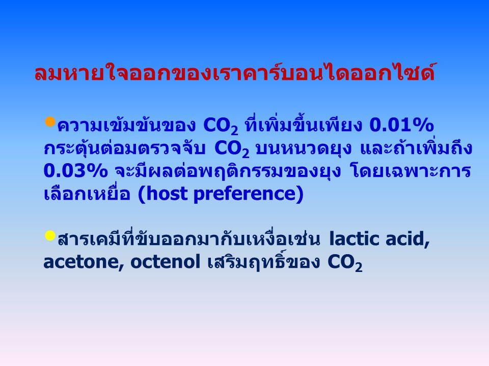 ลมหายใจออกของเราคาร์บอนไดออกไซด์