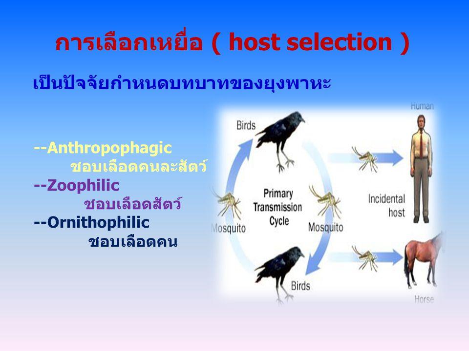 การเลือกเหยื่อ ( host selection )