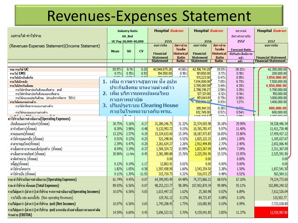 Revenues-Expenses Statement