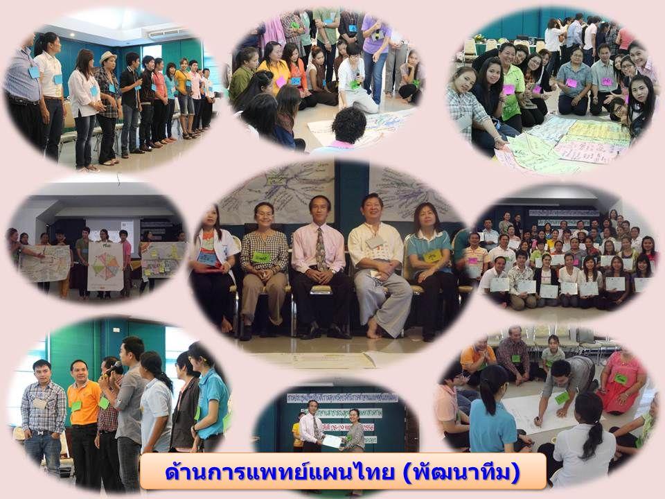 ด้านการแพทย์แผนไทย (พัฒนาทีม)