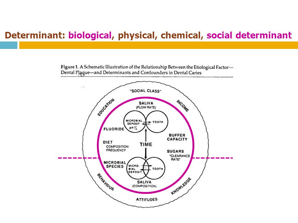 Determinant: biological, physical, chemical, social determinant