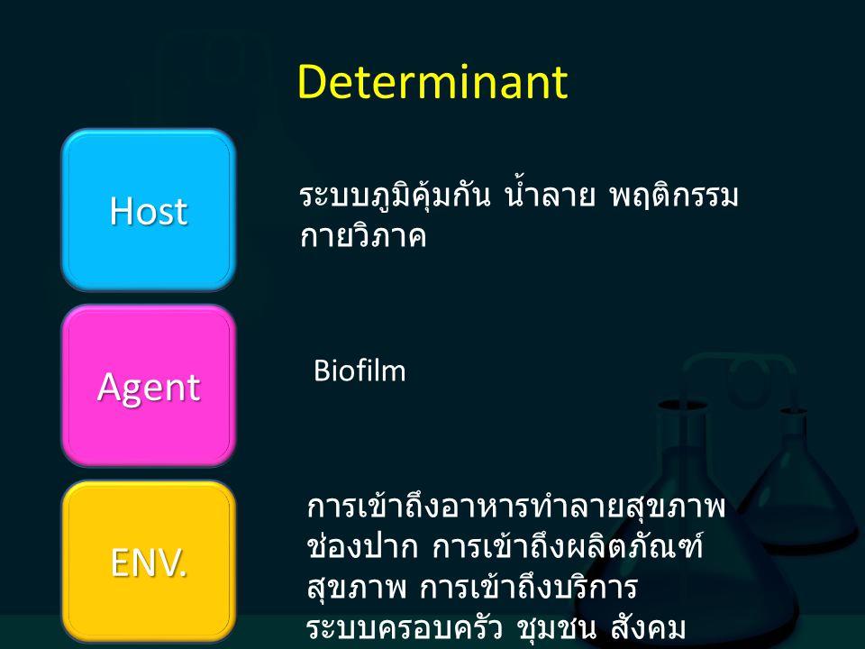 Determinant Host Agent ENV. ระบบภูมิคุ้มกัน น้ำลาย พฤติกรรม กายวิภาค