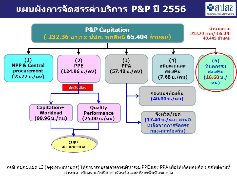 แผนผังการจัดสรรค่าบริการ P&P ปี 2556