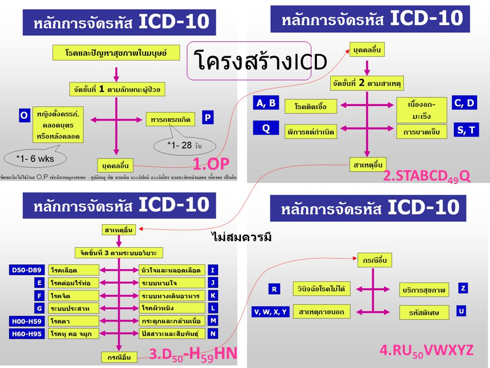 โครงสร้างICD 1.OP 2.STABCD49Q ไม่สมควรมี 3.D50-H59HN 4.RU50VWXYZ