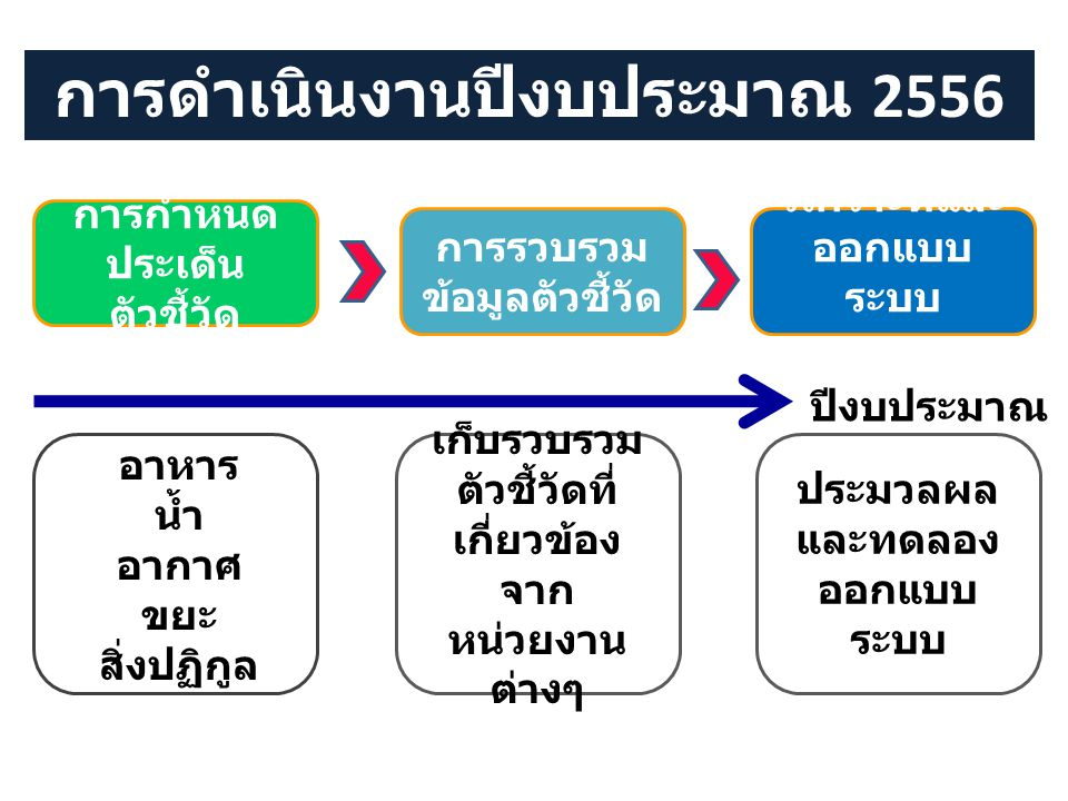 การดำเนินงานปีงบประมาณ 2556